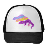 geckos 01 cap