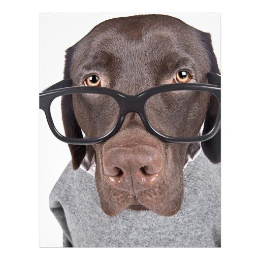 Geeky Dawg 21.5 Cm X 28 Cm Flyer