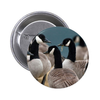 Geese 6 Cm Round Badge