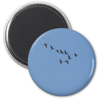 Geese flying magnet