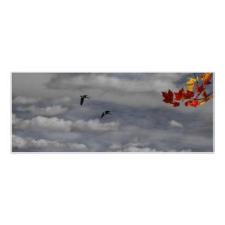 Geese in a Maple Sky Poster