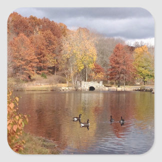 Geese in Reflected Fall Colors - Square Sticker