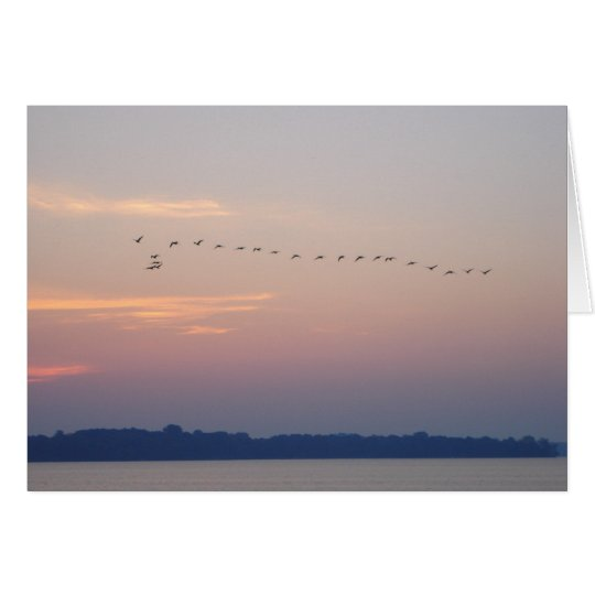 Geese over White Bear Lake Card