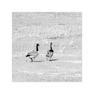 Geese Photo Self-inking Stamp