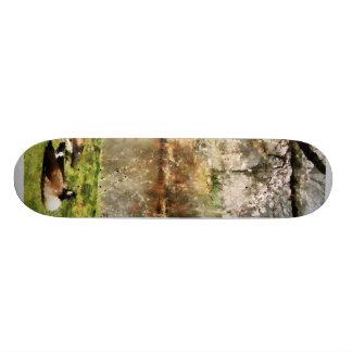 Geese Under Flowering Tree Closeup Skate Board