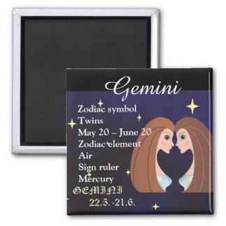 Gemini Horoscope Zodiac Sign Magnet