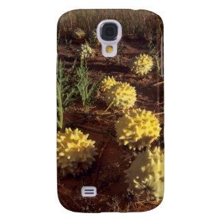 Gemsbok Cucumber (Acanthosicyos Naudinaris) Galaxy S4 Case