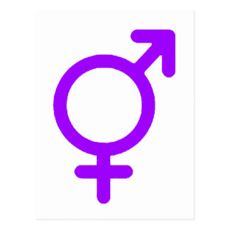 Gender Neutral Purple The MUSEUM Zazzle Gifts Postcard