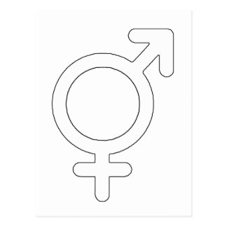 Gender Neutral White The MUSEUM Zazzle Gifts Postcard