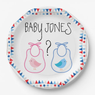 Gender Reveal BabyQ Plates 9 Inch Paper Plate