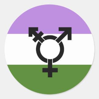 Genderqueer Pride Flag Classic Round Sticker