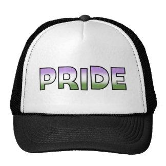 Genderqueer Pride Hat