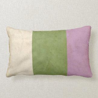 GENDERQUEER PRIDE VINTAGE DESIGN - 2014 PRIDE png Throw Pillows