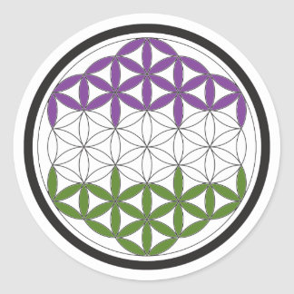 genderQueer sacred geometry Round Sticker