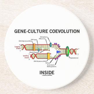 Gene-Culture Coevolution Inside (DNA Replication) Drink Coaster