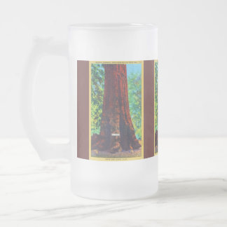 """General Sherman,"" 5000 Years Old, Big Trees Park Frosted Glass Mug"