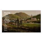General view, Lourdes, Pyrenees, France vintage Ph Pack Of Standard Business Cards