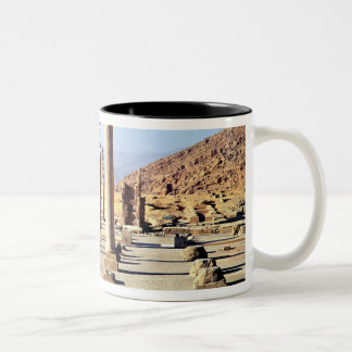 General view of the Apadana  founded c.518 BC Mug