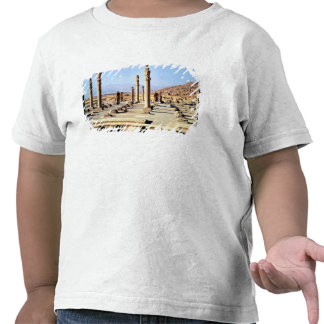 General view of the Apadana  founded c.518 BC T Shirt