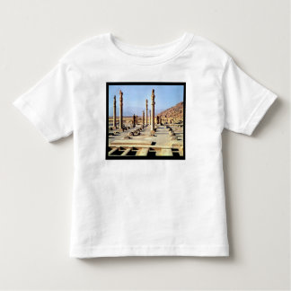 General view of the Apadana  founded c.518 BC Tshirts