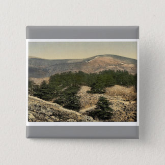 General view of the cedars of Lebanon, Lebanon, Ho 15 Cm Square Badge