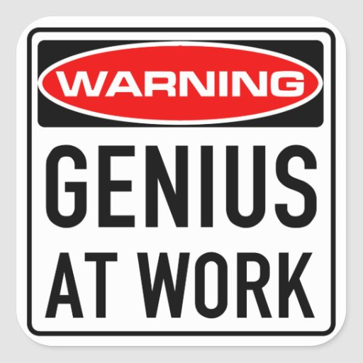 Genius At Work Funny Warning Road Sign Stickers