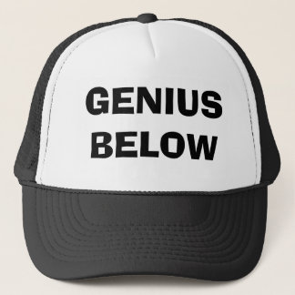 GENIUS BELOW TRUCKER HAT