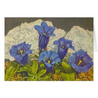 Gentian Flower Card