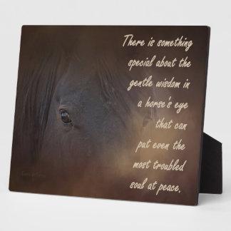 Gentle Wisdom in a Horse's Eye Plaque