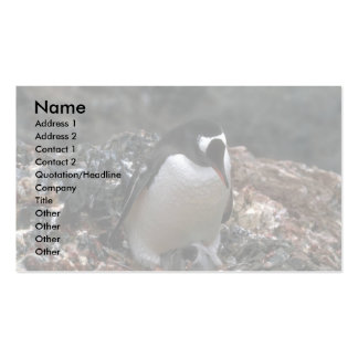 Gentoo Penguin - Adult With Small Chicks In Nest Business Card Template
