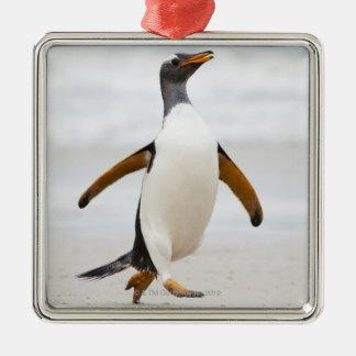 Gentoo Penguin Christmas Ornament