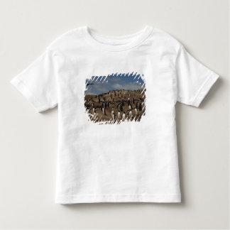 Gentoo Penguin (Pygoscelis papua) colony on West Toddler T-Shirt
