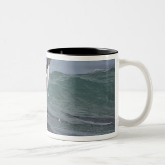 Gentoo Penguin Pygoscelis papua) coming in on Two-Tone Coffee Mug
