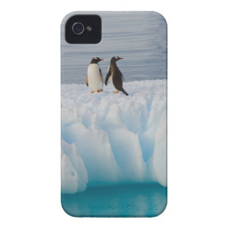 gentoo penguin, Pygoscelis Papua, on glacial ice iPhone 4 Case-Mate Cases