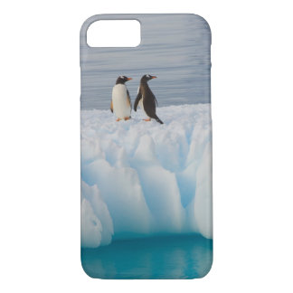 gentoo penguin, Pygoscelis Papua, on glacial ice iPhone 8/7 Case