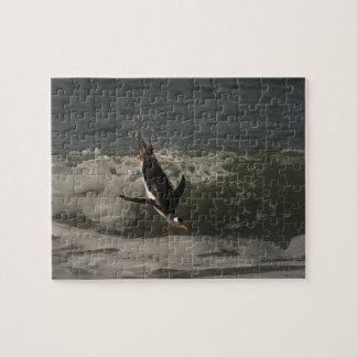Gentoo Penguin (Pygoscelis papua) Sea Lion Jigsaw Puzzle