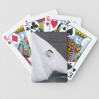 Gentoo penguin Pygoscelis papua) standing Bicycle Playing Cards