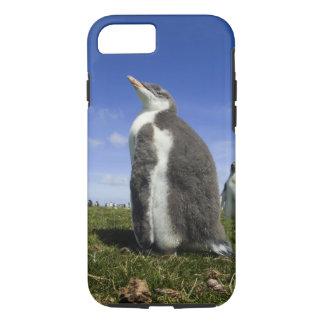 Gentoo Penguin, Pygoscelis papua, with fuzzy iPhone 8/7 Case