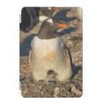 gentoo penguin, Pygoscelis papua, with newborn iPad Mini Cover