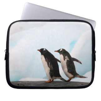 Gentoo penguins on rocky shoreline with backdrop 2 laptop sleeve