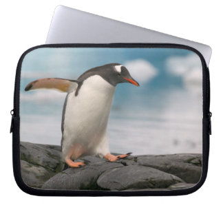 Gentoo penguins on rocky shoreline with backdrop 3 laptop sleeve