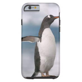 Gentoo penguins on rocky shoreline with backdrop tough iPhone 6 case