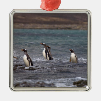 gentoo penguins, Pygoscelis papua, jumping out Silver-Colored Square Decoration