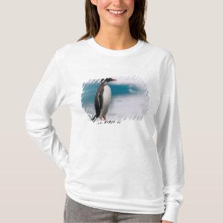 Gentoo penguins Pygoscelis papua on rocky T-Shirt