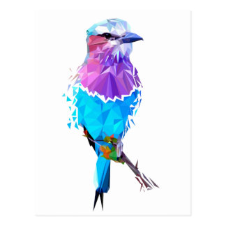Geo Bird Postcard