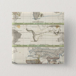 Geographical Distribution 15 Cm Square Badge
