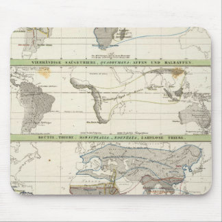 Geographical Distribution Mouse Mat