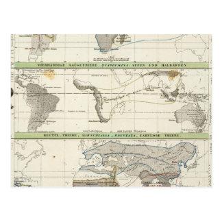 Geographical Distribution Postcard