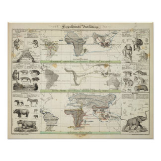 Geographical Distribution Poster