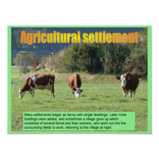 Geography, Social studies, Agricultural settlement Poster